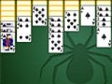 Солитер паук