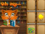 Библиотека Сиси