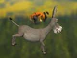 Шрек и кот убегают на осле