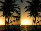 Отличия в раю