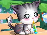 Доктор Плюшева- бродячий котенок
