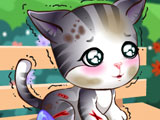 Доктор Плюшева: уход за котенком