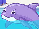 Безделье дельфина