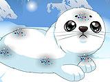 Звездный любимец: детеныш тюленя