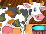 Гольштейнская корова
