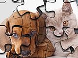 Кошки Против Собак Головоломка