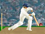 Кубок мира по крикету: тренировка