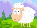 Кормить овцу