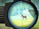 Обучение охотника