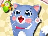 Супер счастливый котенок