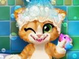 Котенок Расти в ванной