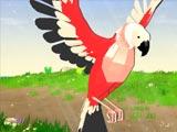 Симулятор попугая
