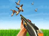 Охота на птиц